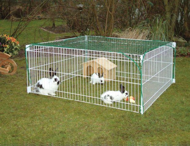 Faut-il mieux acheter une cage à lapin ou un enclos à lapin ?