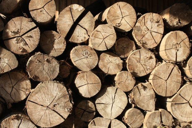 Le bois un bon combustible pour une chaudière ?