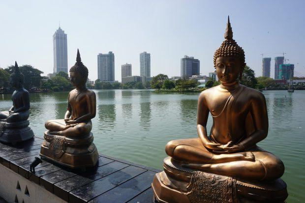 Partir au Sri Lanka : quelques idées de sites à découvrir